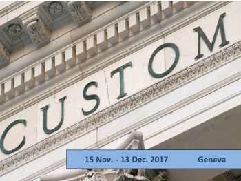 Customs policies: theory and practice